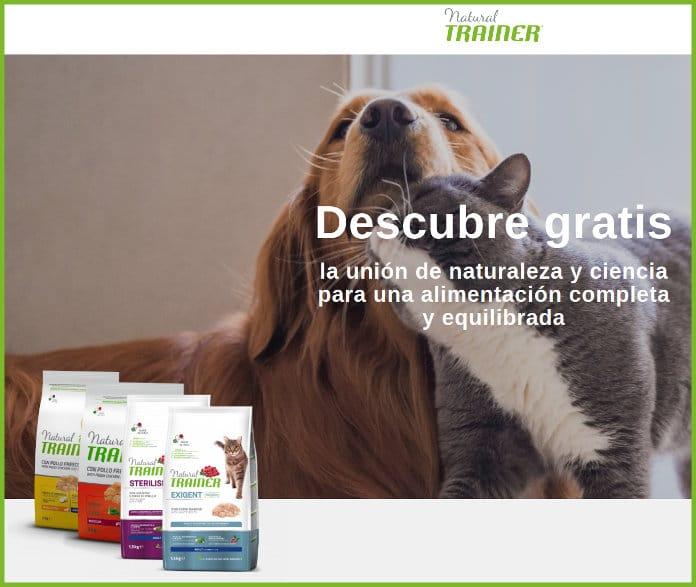 Test-Free-alimentos para mascotas natural de formadores