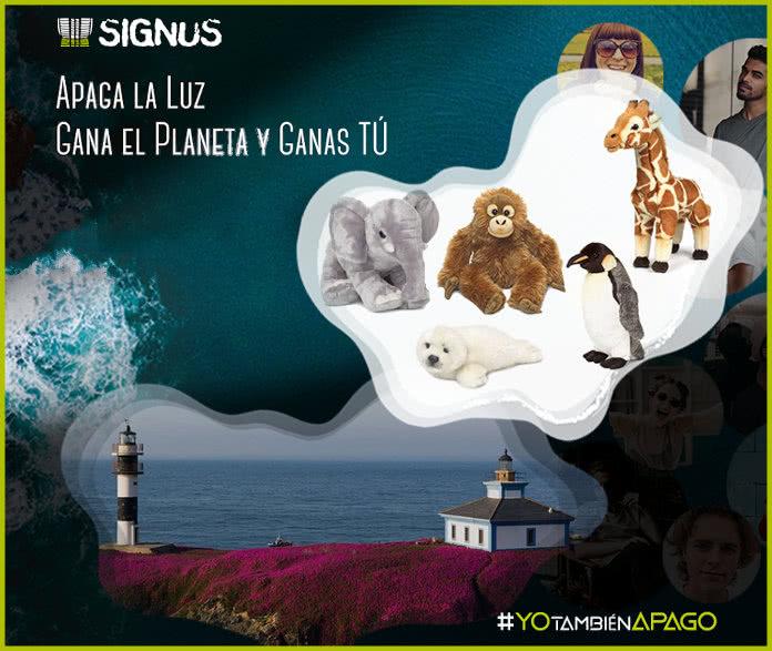 peluches Signus-sorteo-12-