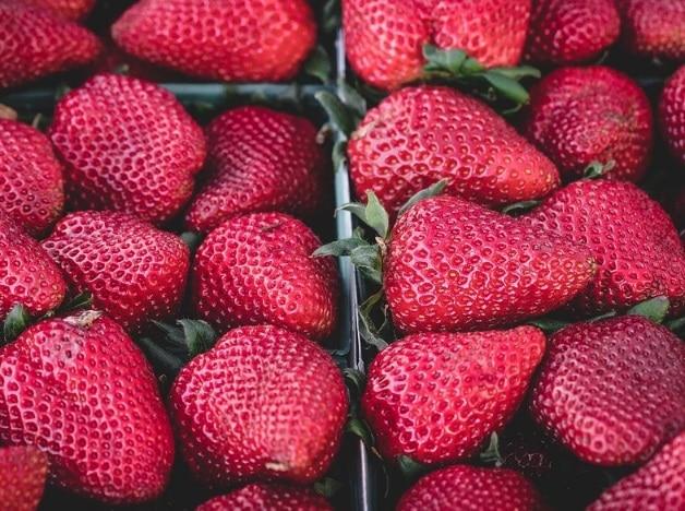 fresas maceradas
