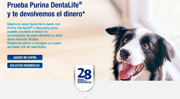 Prueba Purina DentaLife gratis