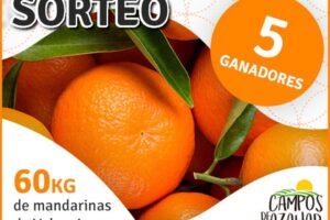 Campos de Azahar sortea 5 cajas de 12 kg de mandarinas de Valencia – Regalos y Muestras gratis