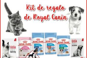 Kit de productos gratis para tu mascota de Royal Canin – Regalos y Muestras gratis