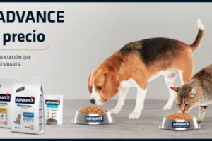 Nuevo reembolso Advance para tus mascotas – Regalos y Muestras gratis